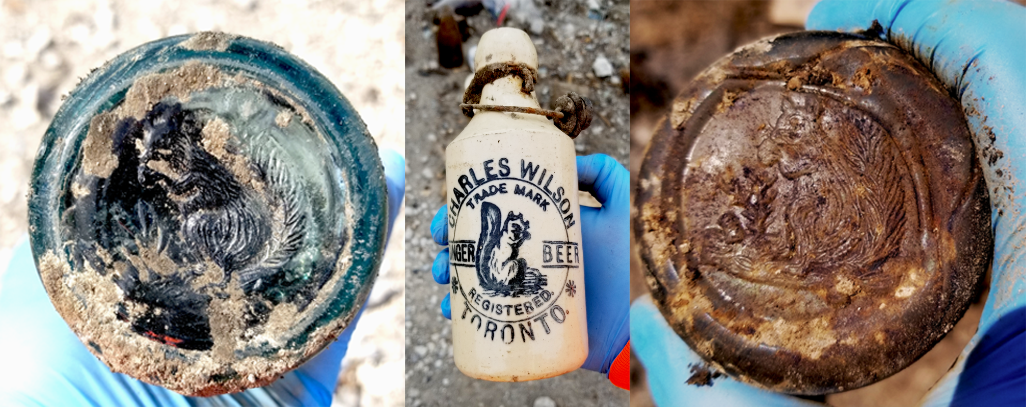 Three bottles found in the Port Lands, each showing Charles's Wilson's squirrel trademark.