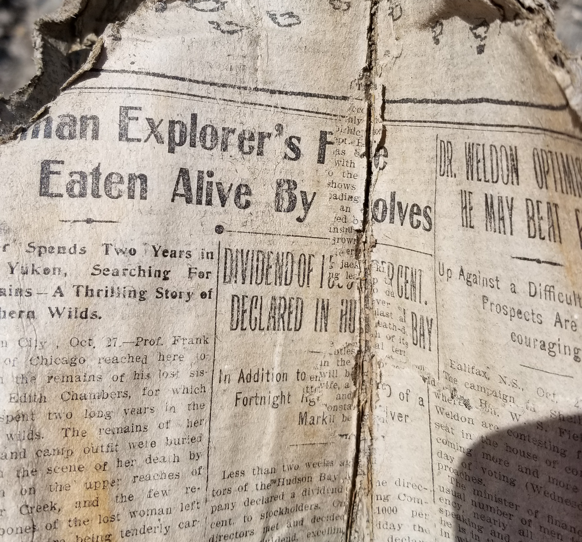 A weathered fragment of newspaper.