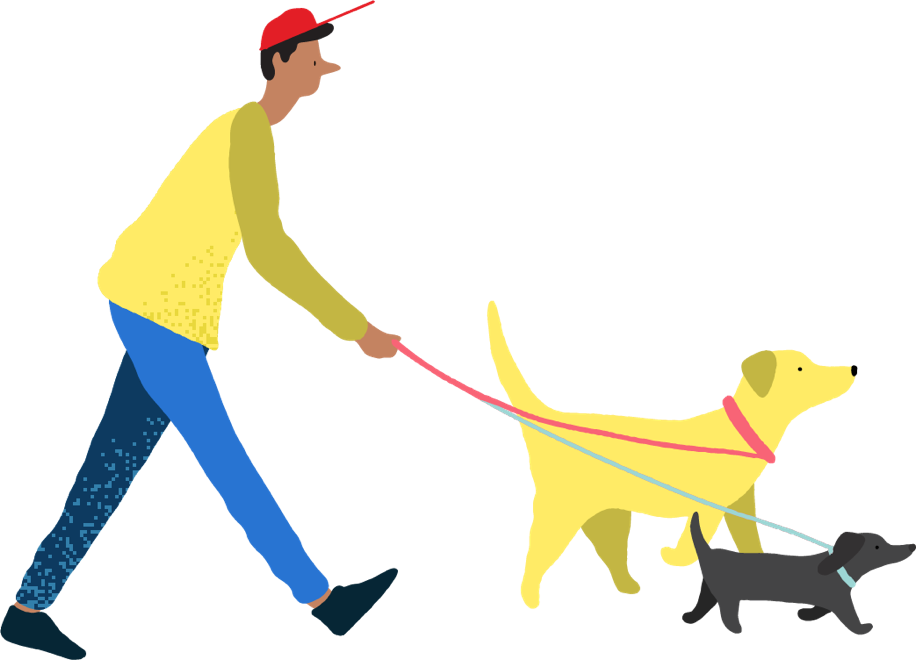 illustration of man walking two dogs